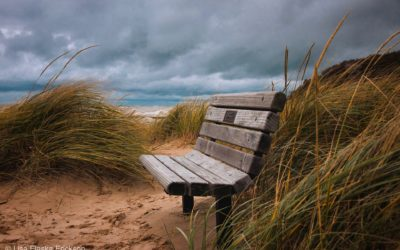 A Beach Bench Waits for Another Year of Onlookers