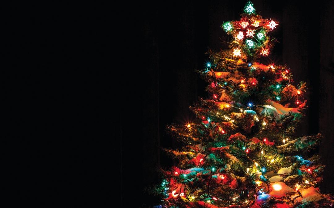 5 Must-See Northern Michigan Christmas Light Displays