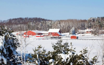 Northern Michigan Events in March Entertain and Warm You Up