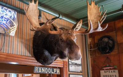 Have You Kissed the Moose at Sleder's Family Tavern?
