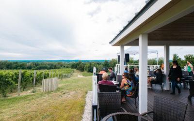 Sip the Best Red Wines on the Leelanau Peninsula + See Peak Northern Michigan Fall Color