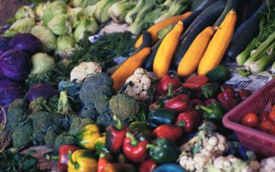 Groundwork Launches Local Food Relief Fund