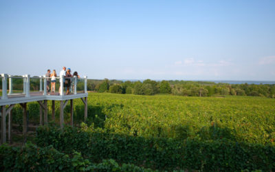 Northern Michigan Wine Tasting with a (Bay!) View