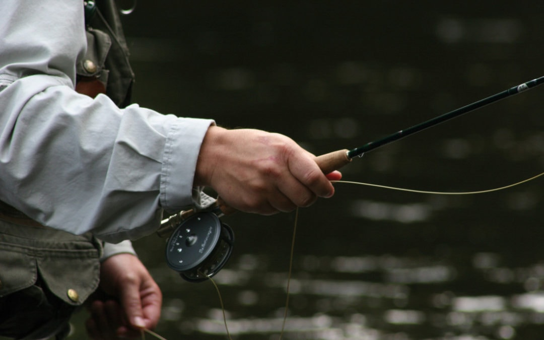 fly fish, fly fishing, au sable, gates