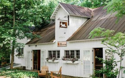 Tips, Hot Properties & How to Buy a Home in Northern Michigan