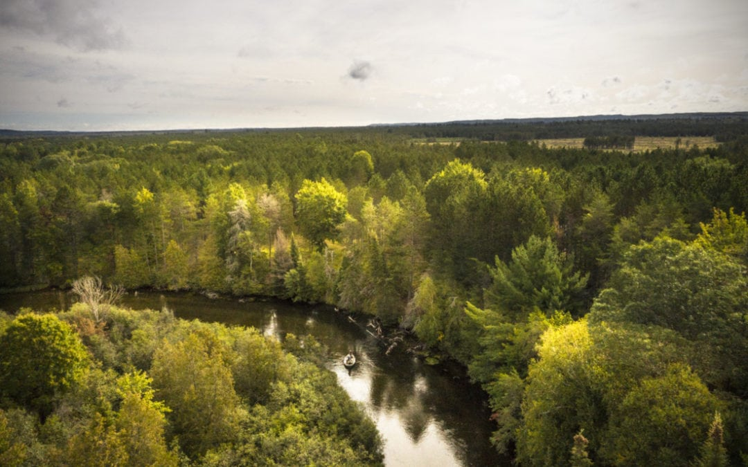 Experience the Hex Hatch in Northern Michigan—It's Epic