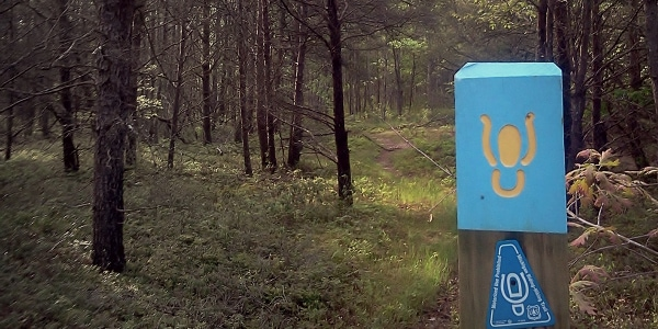Shore to Shore Trail – South Segment