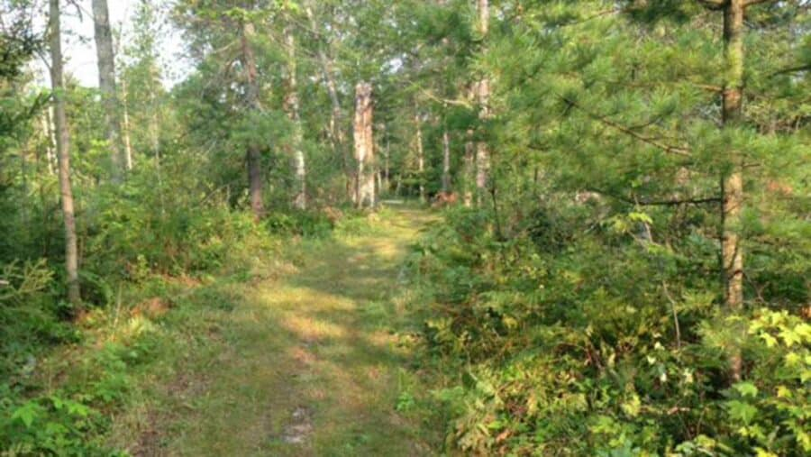 _tisdale_triangle_trail