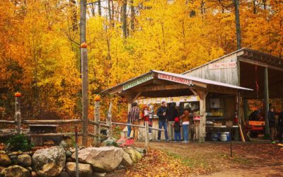 Don't Miss Pond Hill Farm's Fall Fest Weekends!