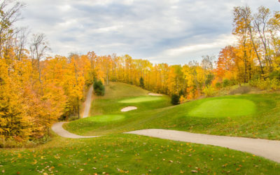 Want to Own a Northern Michigan Golf Course? Bahle Farms For Sale