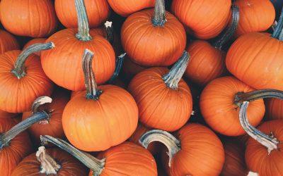 8 Thrilling Activities & Halloween Events in Northern Michigan