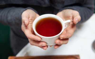 Cozy Up with Traverse City-Grown Tea from Light of Day Organics