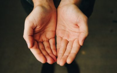 Donate Northern Michigan: Homelessness to Food Insecurity