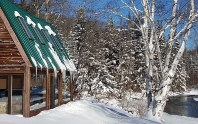 10 Warm and Cozy Cabins to Rent in Northern Michigan