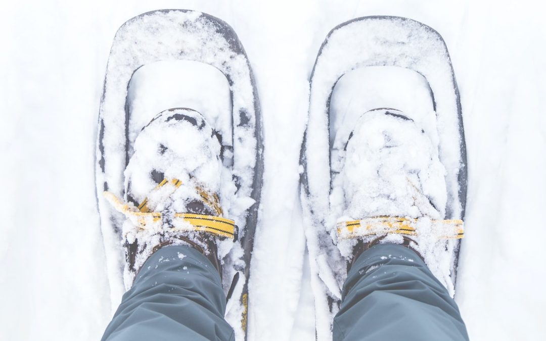 Chain of Lakes Region in Winter? Grab Your Snowshoes