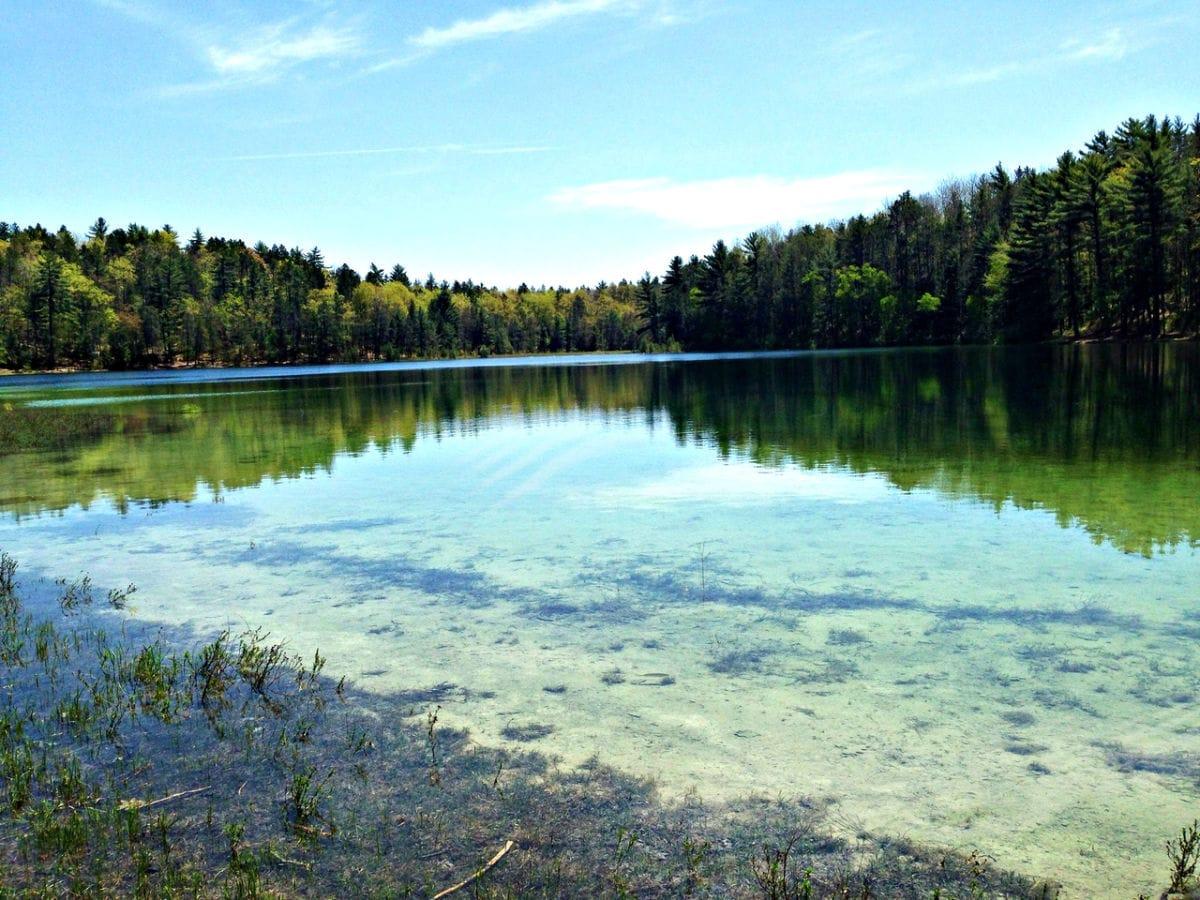 Sand-Lakes-Quite-Area_154a0821-5056-a348-3a97ea42e7ff3c6b