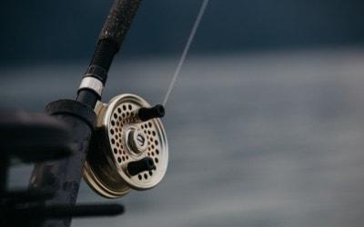 Northern Michigan Fishing Report Dec. 2: Steelhead Biting