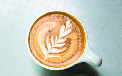 Arcadia Group Wants to Develop a Coffee Shop & More