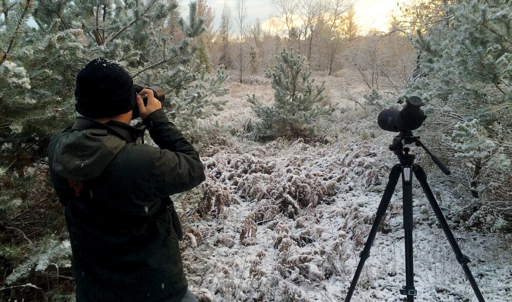 These Northern Michigan Birding Spots Some of State's Best