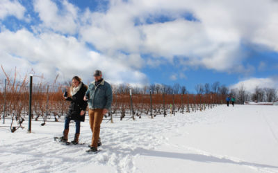 Eat, Drink, Ski, Hike, Explore on These Northern Michigan Tours