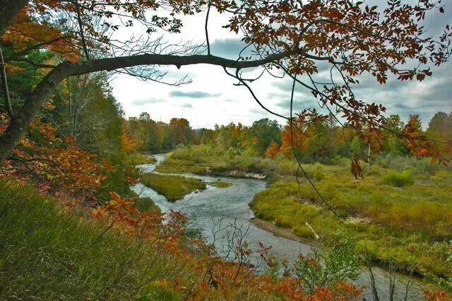 Reffitt-Nature-Preserve