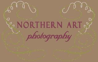 NAP_logo_noborder-e1502202743166
