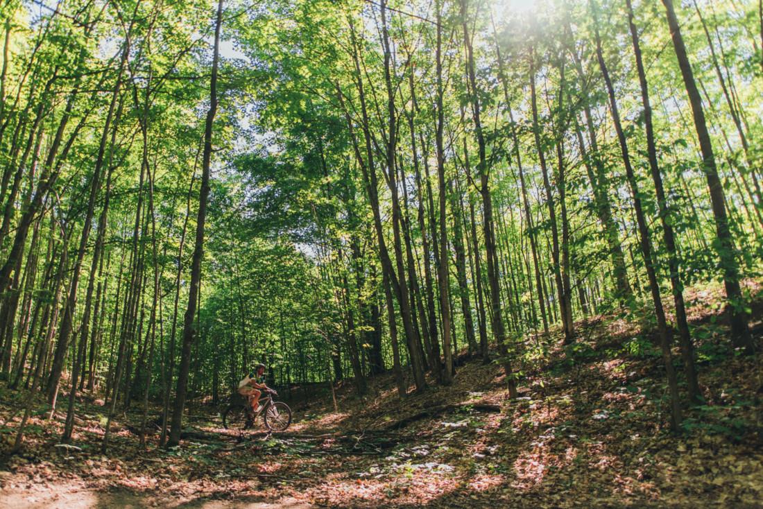Person biking on Northern Michigan trails.