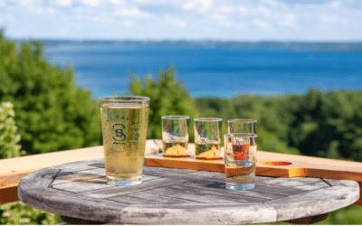 31 Northern Michigan Ciders To Try From Dry to Sweet