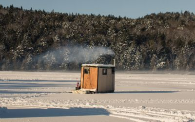 Northern Michigan Smelt: The Allure of Fishing by Moonlight