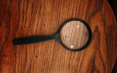 Murder Mystery Dinner Theater at Chamberlin's Ole Forest Inn