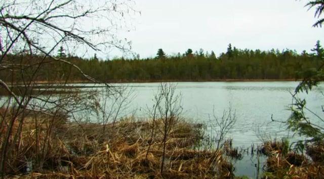 Pyatt Lake, an Old Mission Natural Area