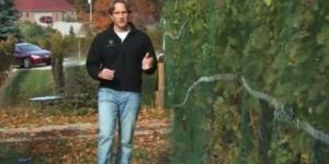 Spencer Stegenga Walks the Vines of Bowers Harbor Vineyard
