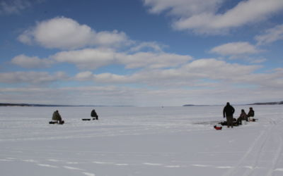 Ice Firms, Perch and Walleye Biting + Four Tips for Pike Fishing