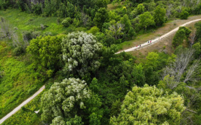 Don't Miss this Traverse City Urban Hike with SBD Tours