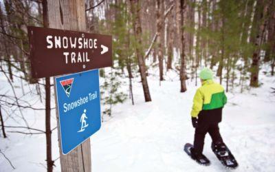 Walk, Bike, Ski These TART Trails in Traverse City Region