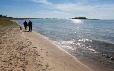 Fisherman's Island State Park Day-Use Area to Reopen