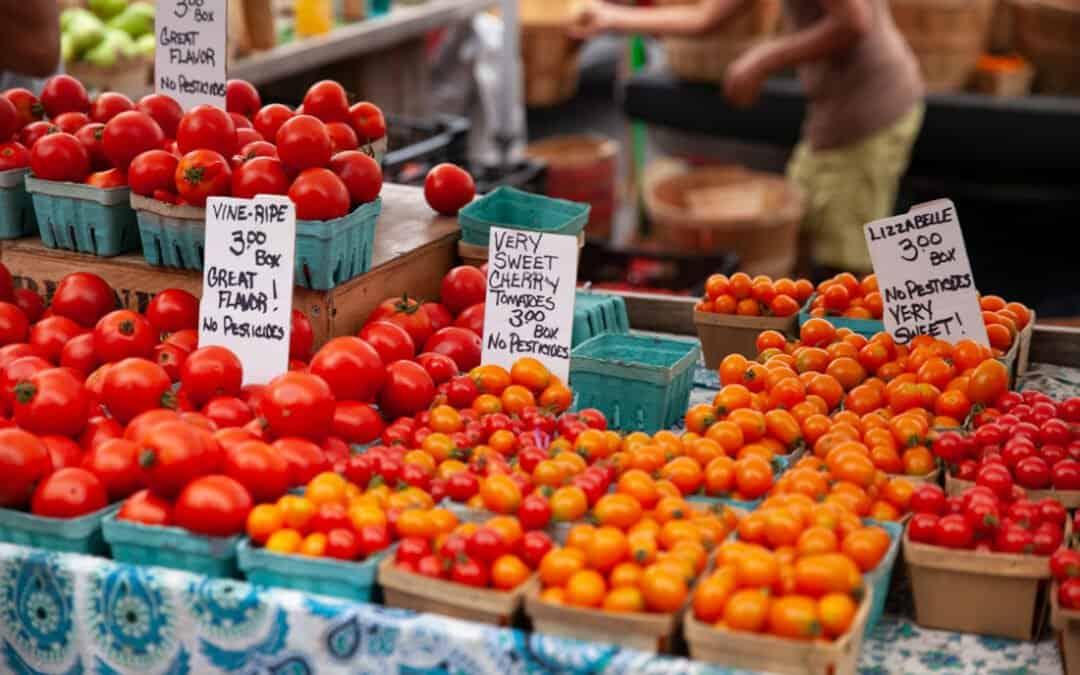 Traverse City's Sara Hardy Farmers Market Summer Updates