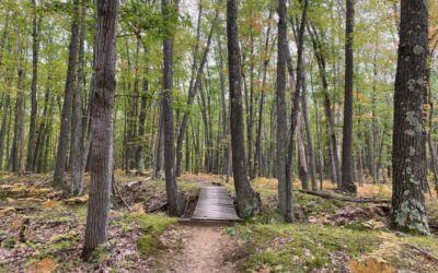 Explore Challenging Bike Trails & Endless Views at Hanson Hills
