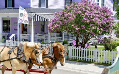 73rd Lilac Festival Returns to Mackinac Island for 2021
