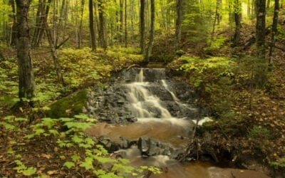 Hike in Marquette at Vielmetti-Peters Conservation Reserve