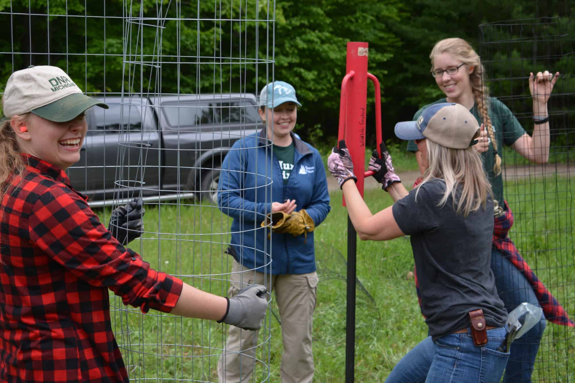 Pigeon River Country State Forest tree planting