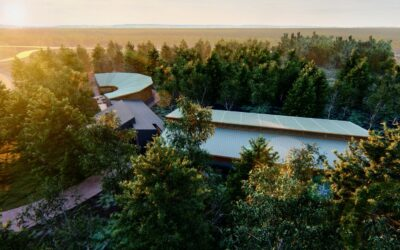 Help Build the Migizi Aviary North of Harbor Springs