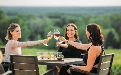 Don't Miss Leelanau Peninsula Wine Trail's Harvest Days