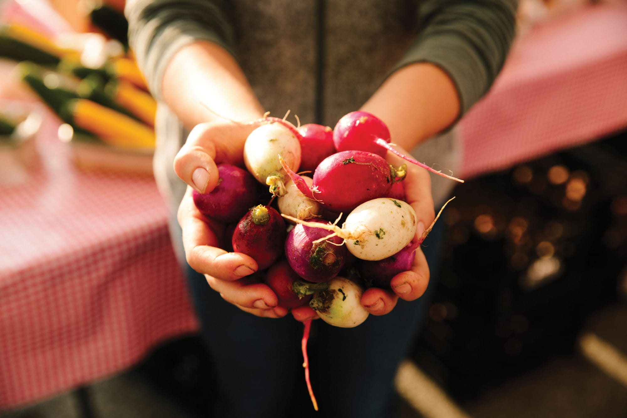 Radishes from a local Farmers Market