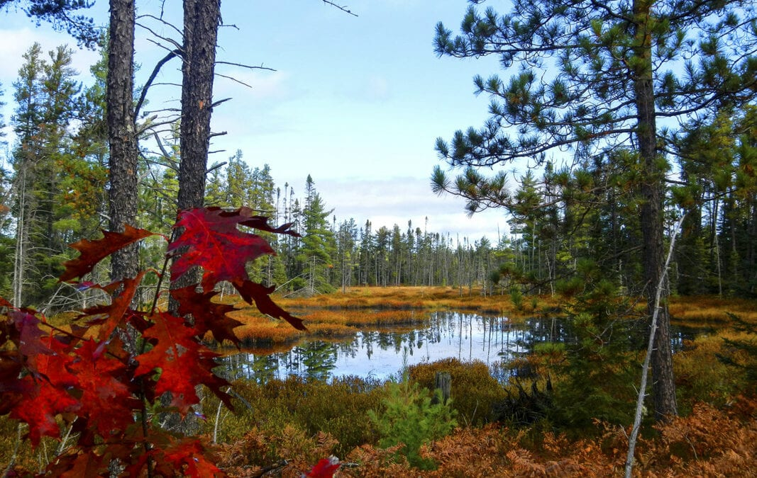 Hit St. Ignace Trails for Fall Color Hiking in Upper Peninsula