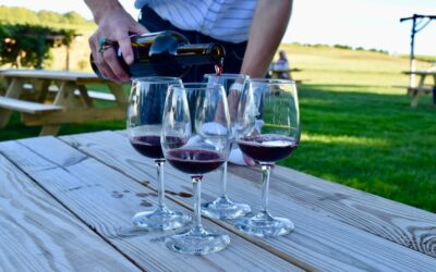 Hop On This Self-Guided Leelanau Peninsula Winery Tour By Bike