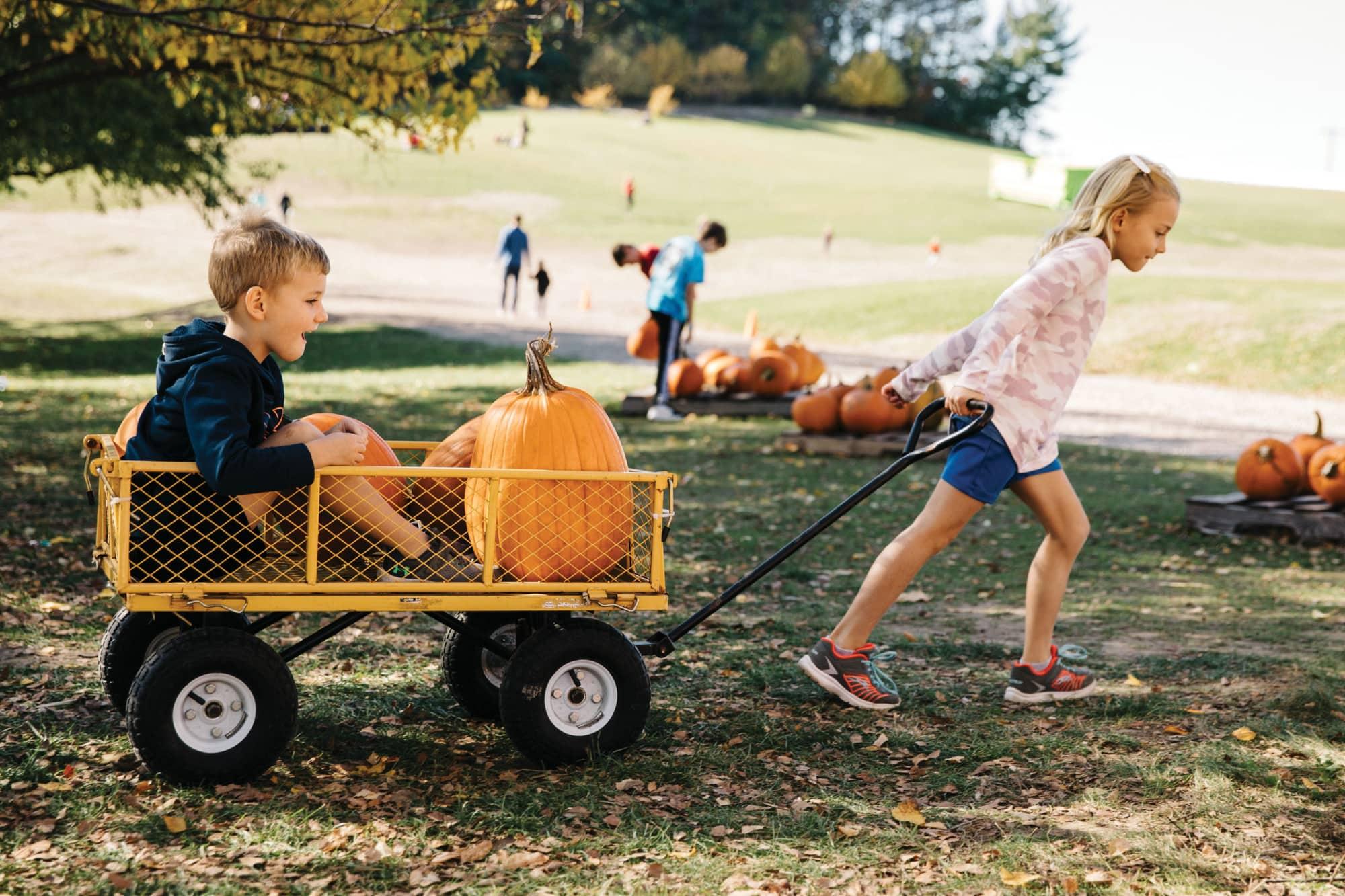 Girl pulling boy with pumpkin in wagon